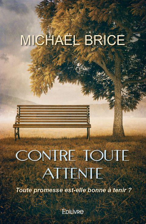 """""""Contre toute attente"""" – Michaël Brice"""